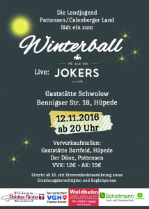 dina6_winterball